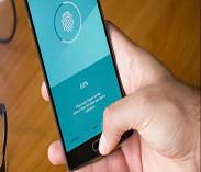 手机面板需求旺到年底 价格维持高档
